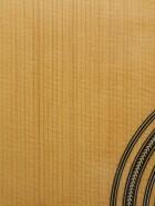 1973 Gurian J-R. SN C1179. Guitar Database. | Guitarbench ...